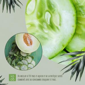 Concombre melon – 50hrs